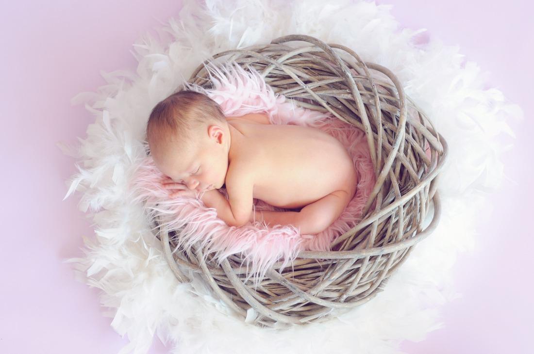 baby-784608_1920